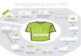 story of a cotton t shirt
