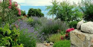 immagini di giardini fioriti giardino marittimo come creare il tuo spazio verde