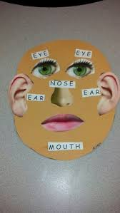 57 best body parts images on pinterest body parts autism and