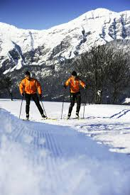cross country skiing in viehhofen