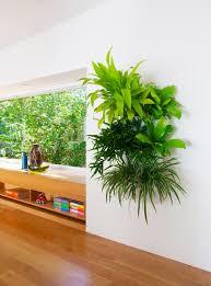 new living wall planter gardening u0026 homesteading pinterest