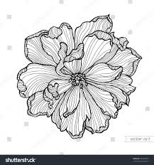tulip flower top view line pattern stock vector 472021927