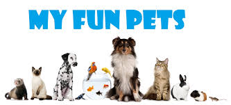 types of domestic pets my fun pets