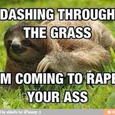 Rape Sloth Memes - rape sloth funny pinterest sloth sloth memes and memes