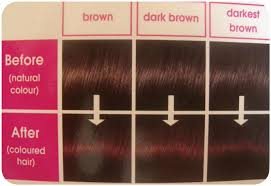 mahogany hair color chart i coloured my hair again l oreal casting creme gloss miss