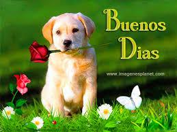 imágenes de animadas de amor dando los buenos dias buenos dias con imagenes bonitas de perrito con rosas y maiposa