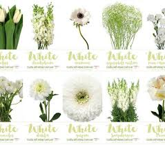wedding flowers guide white wedding flowers names and pictures types wedding