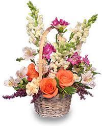 Flowers Glasgow - best selling flowers glasgow mt glasgow flower u0026 gift