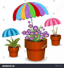 Indoor Container Gardening - design potted potted plants for shade plants for patio shade