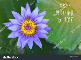 types of purple word welcome 2018 on background purple stock photo 735808414
