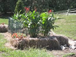 vegans living off the land straw bale u0026 lasagna gardening sheet