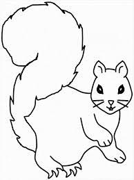 squirrel coloring kids download u0026 print coloring