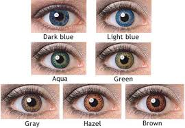 Light Brown Contact Lenses Expressions Colors Contact Lenses Colored Contact Lenses