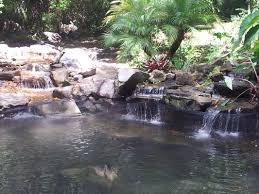 30x20 pond orlando central florida fl premier water garden experts
