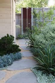 best 25 coastal gardens ideas on pinterest australian garden