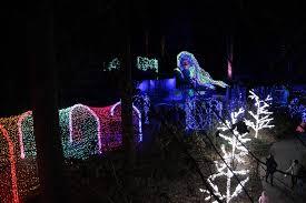 Botanical Gardens Atlanta Lights Finding Magic At The Atlanta Botanical Garden Lights