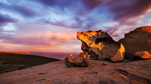 kangaroo island highlights tourism australia