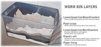 How To Make A Paper Worm - drain free home worm bin composting 12 steps