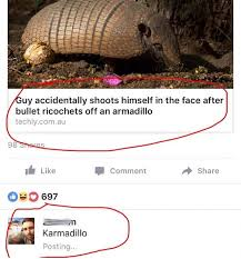 Armadillo Meme - nice memebase funny memes