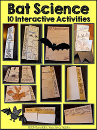 bat science 10 activities that fit in a folding bat book