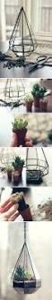 114 best indoor garden ideas images on pinterest plants indoor
