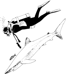 scuba diver pictures to color free coloring pages on art