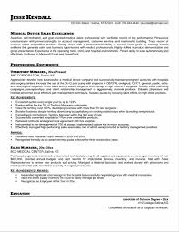 Best Resume Of The Year by Best Sales Resume Examples How To Write A Classification Essay