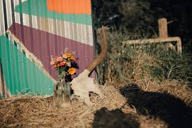 the farm cas haley singer songwriter