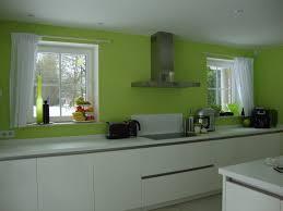 cuisine gris et vert anis cuisine gris vert anis inspirations avec beau peinture cuisine
