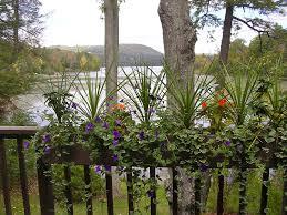 option choice for deck railing planters u2013 mtc home design