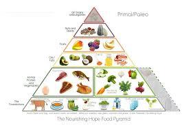 infographic the u0027food pyramid u0027 traditional vs paleo u2013 blonyx