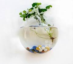 Bubble Vases Wholesale Glass Bubble Vase Online Glass Wall Bubble Vase For Sale
