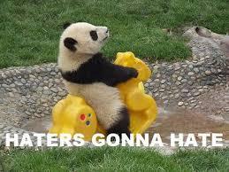 Panda Meme - hater s gonna hate panda meme by pandamunchr on deviantart