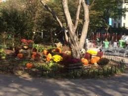 New York Botanical Garden Pumpkin Carving by Halloween Parade And Party The Friends Of Washington Market Park
