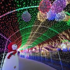 Rochester Michigan Christmas Lights by Master Guide To December Holiday Fun In Greater Rochester Ny