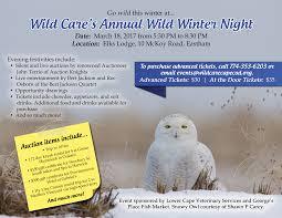 wild winter night 2017 u2013 a big hit wild care