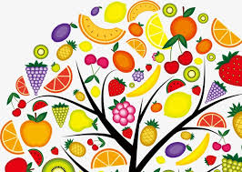 colorful fruit trees multicolored pretty fruit trees png image