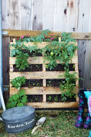 How To Build An Herb Garden How To Make A Vertical Pallet Vegetable U0026 Herb Garden Discover