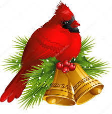 cardinal bird with christmas bells u2014 stock vector jara3000 6674435