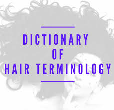 dictionary of hair terminology holleewoodhair