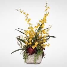 oncidium orchid yellow silk oncidium orchid spray in concrete pot free shipping