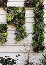pallet garden landscape contemporary with succulents resistant