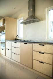 best plywood for cabinets plywood kitchen cabinets best plywood cabinets ideas on plywood