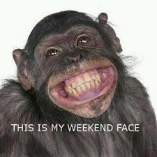 Monkey Face Meme - animal memes 15 pics vitamin ha vitamin ha lmao pinterest