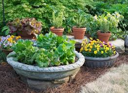 creative of patio vegetable garden containers container vegetable