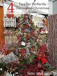 4 tips for perfect christmas trees