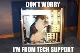 Tech Meme - cat tech support know your meme