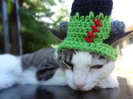 frankenstein cat hat frankenstein cat costume halloween cat