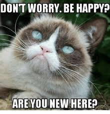 Grumpy Cat Meme Happy - dont worry be happy are you new here grumpy cat meme on me me