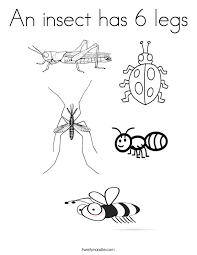 coloring pages insects bugs an insect has 6 legs coloring page twisty noodle